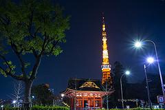 東京タワー&お寺