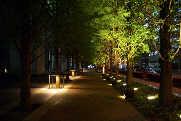 神楽坂の夜道