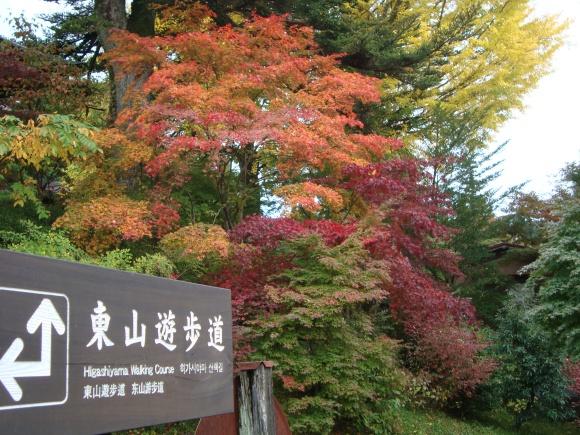 東山遊歩道@飛騨高山